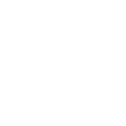 Hue I Do • The Complexions of Black Weddings